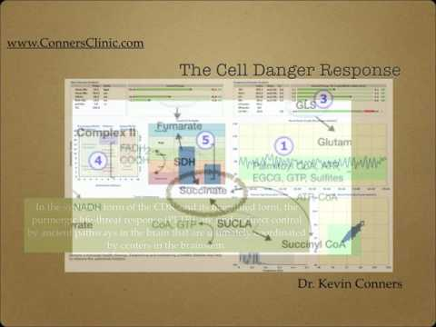 Cell Danger 101 Dr. Kevin Conners