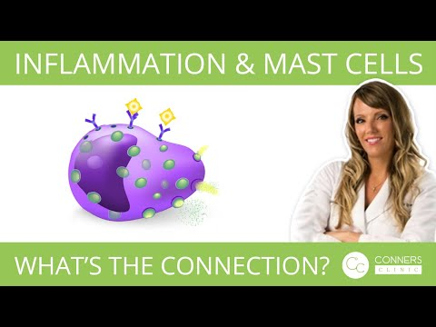 How Does Inflammation Tie Into Mast Cells ? | Conners Clinic