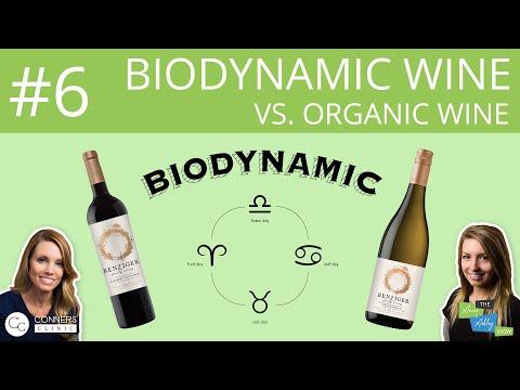#6: Biodynamic Wine vs. Organic Wine | The Anne & Ashley Show