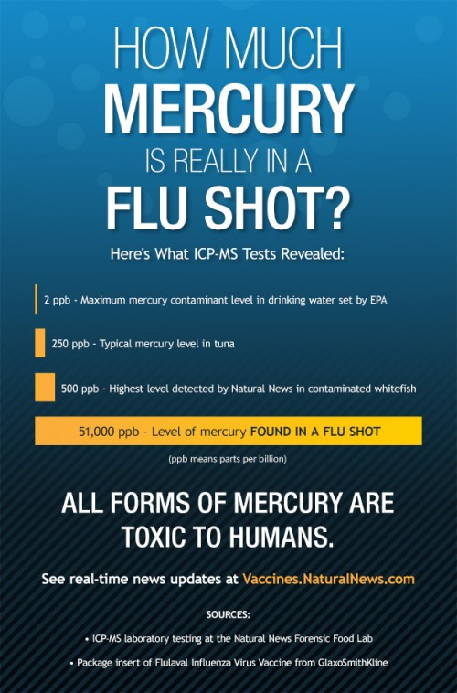 Infographic-How-Much-Mercury-is-Really-in-a-Flu-Shot-600