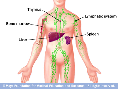 Cancer, Lymph and Rife