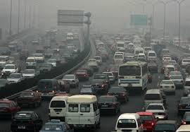 Air Pollution Damages the Brain