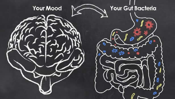 Depression and the GUT 1