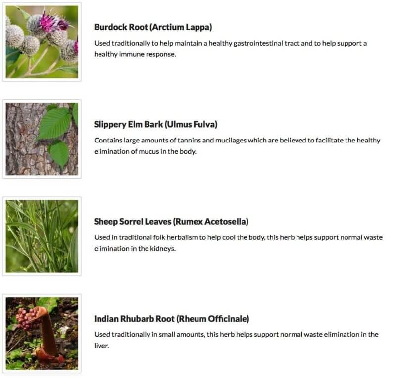 essiac-tea-cancer-treatment-alternative-extract-conners-clinic.jpg-natural-herbs