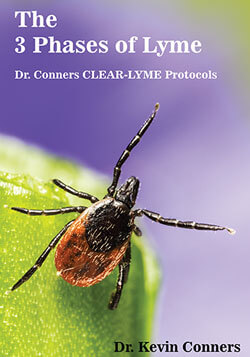 the-three-3-phases-of-lyme-clear-protocols-dr-kevin-conners-clinic-250