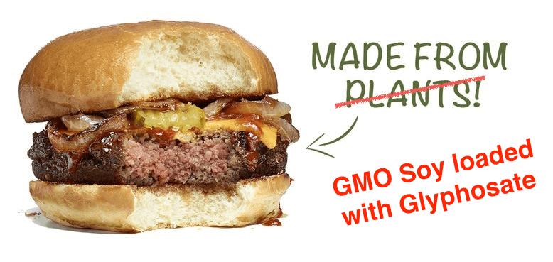GMO burgers