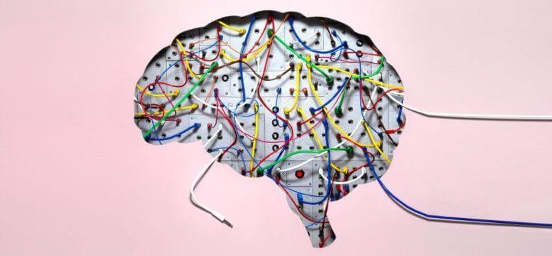 8 19 2018 brain wires 1940x900 34831