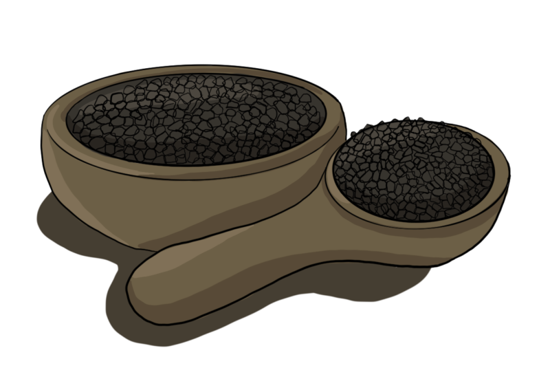 Black Seed Oil: The Key to Better Health 1