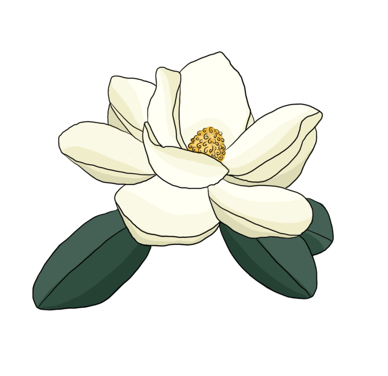 Inhibiting Cancer Growth? Try Magnolia 1