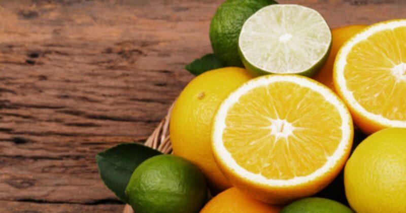 Modified Citrus Pectin for Health & Longevity 1