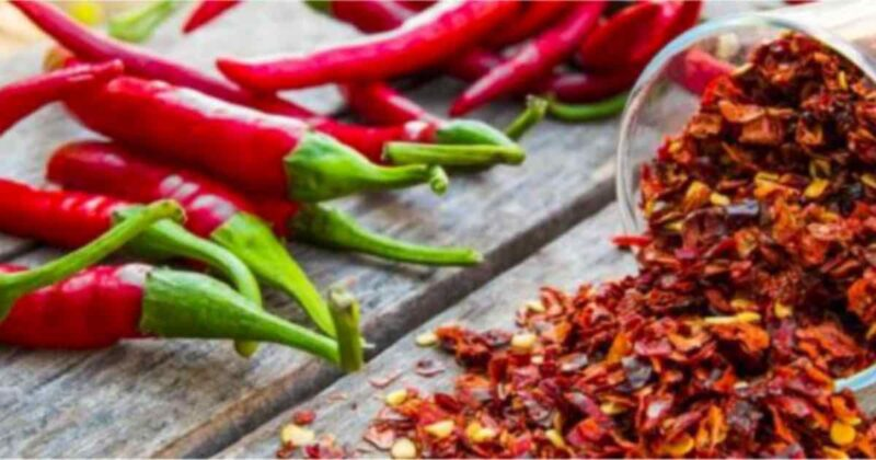 treating-cancer-with-cayenne-pepper-and-Capsaicin-conners-clinic-cancer-natural-health