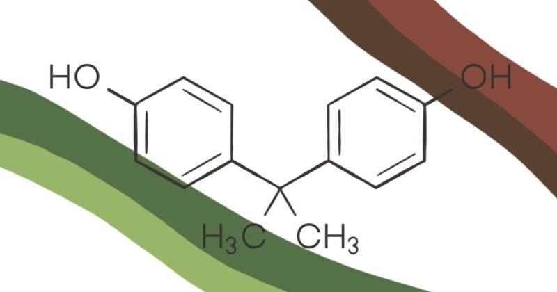 Hormones & BPA 1